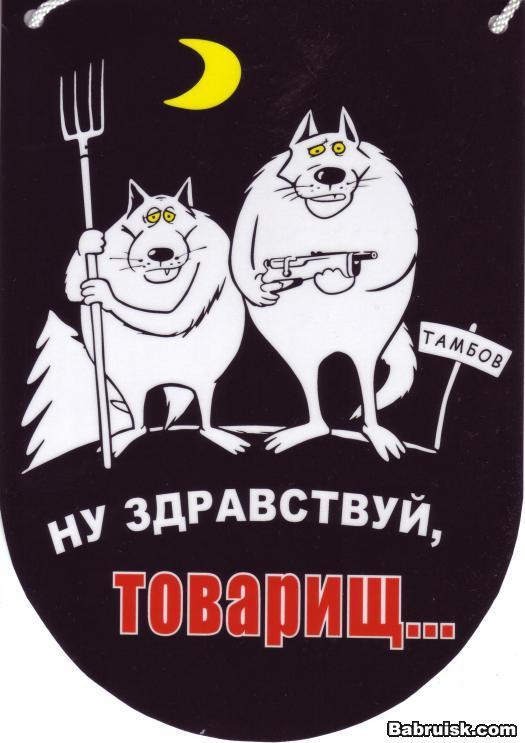 """""""Правый сектор"""" обещает наказывать мародеров по строгости военного времени: """"Здесь не место для атаманщины и анархии"""" - Цензор.НЕТ 9828"""