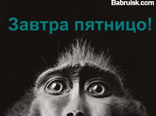 обезьяна пятничаня, хуле...