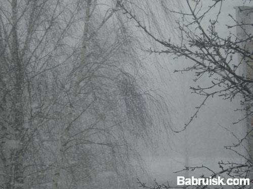 зима, хуле