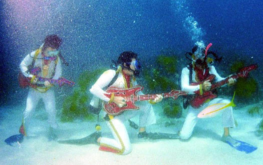 Подводный ансамбль