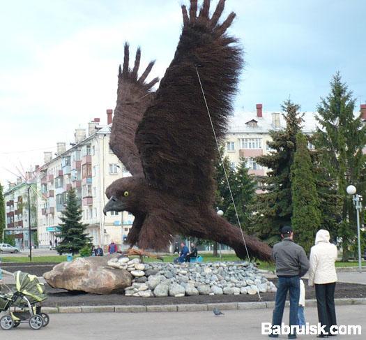 орел в городе орел