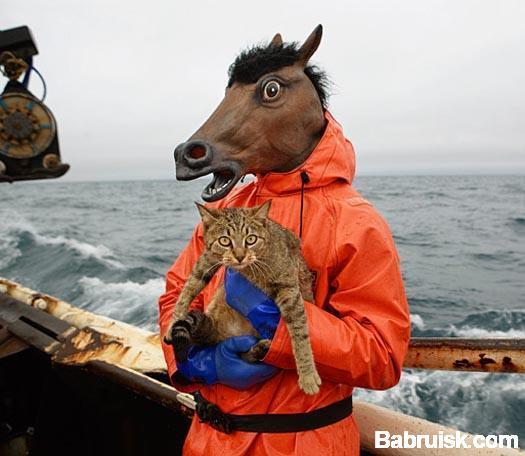 морской конь и аццкий