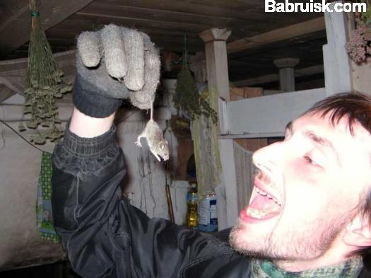 поймал мышку