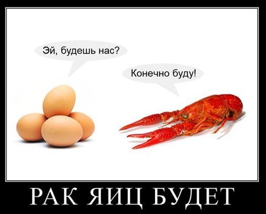 рак яиц