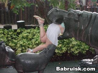обед с бегемотами. Бони 22 года ушла первой... помянем...