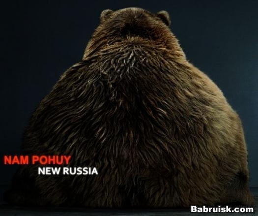 Медвед и новая россия