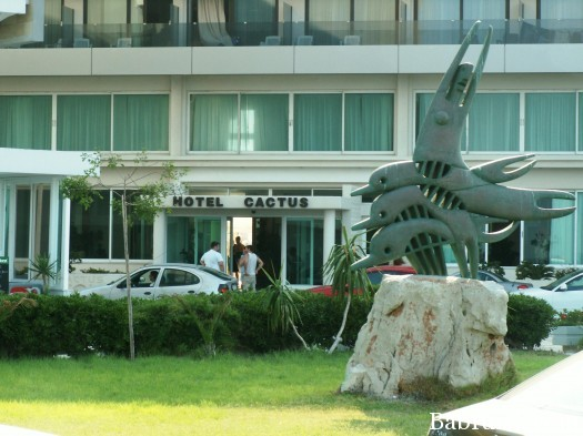 отель кактус отзывы