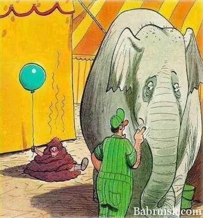 слон-подонок