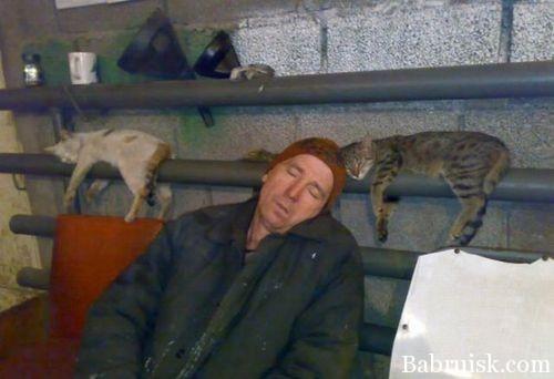 баян про монорельсовых котов в говно
