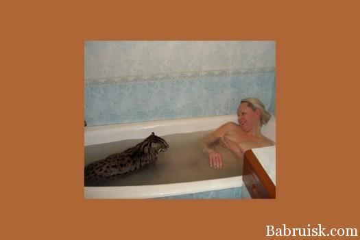 Пьяная пизда принимает ванну с котом