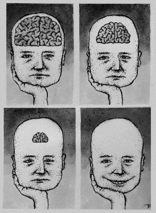нет мозгов