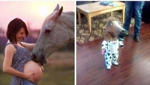 конь выебал бабу