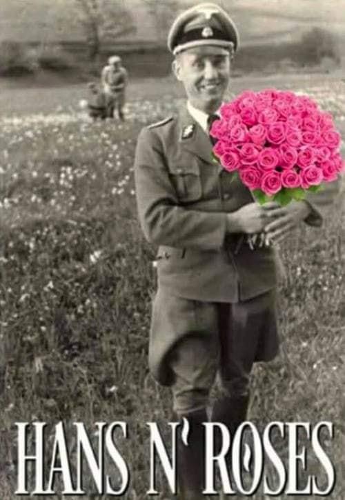 hans'n'roses