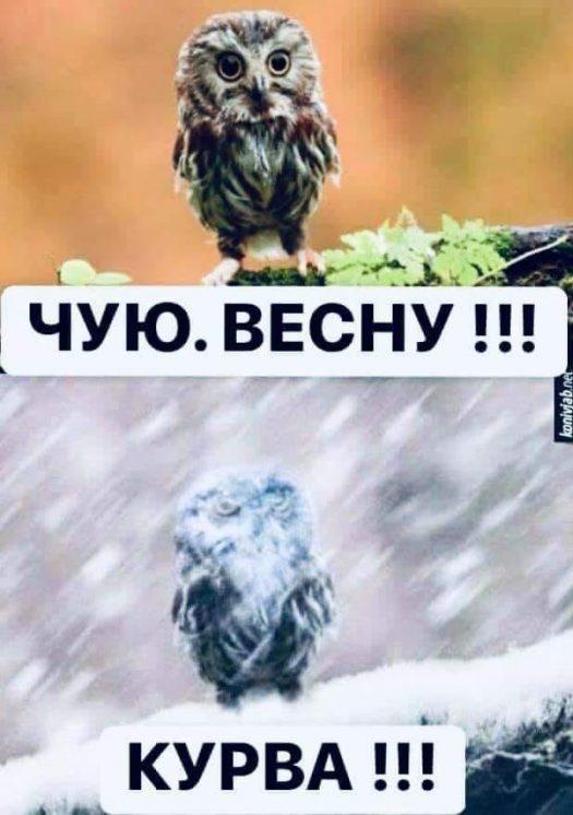погода курва