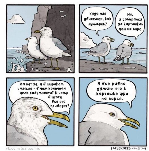 Чайки и фри